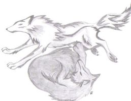 Wolves by kaiserwolf