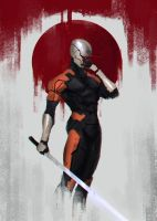 Gray Fox Sketch by SalvadorTrakal