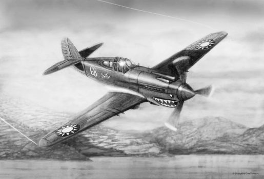 Curtiss P-40B Flying Tiger by DouglasCastleman