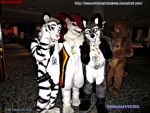 FWA Photo (65/93) AoLun( L) name?(M) Fenrir(R) by HomeOfBluAndshadows