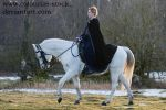 Rider stock 4 by Colourize-Stock