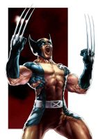 Wolverine by PatC-14