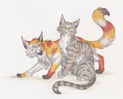 Riverclan Apprentices Endless Storm By Captainmorwen On