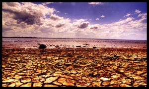 Cracked beach HDR by Leeby