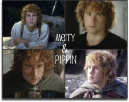 Merry and Pippin collage by Wondercatgirl