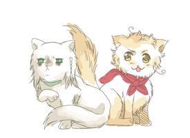 APH - Rome and Germania cats by R-ninja