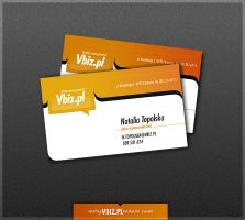 Vbiz business card 2 by drammen