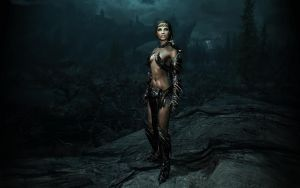 Beauty of Skyrim Night by DonMichael71
