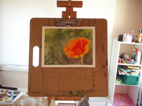 Flower practice three : california poppies. by Ravenskysong