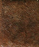 brown01 by akinna-stock