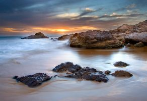 The Cove by LarryGorlin