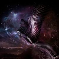 Soaring Star Chaser: Angel without a Cause by suntwirl