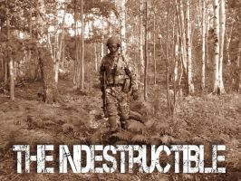 The Indestructible by BlazeTwoe