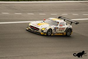 Mercedes Benz SLS AMG GT3 by CatAttack2014