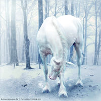 HEE Horse Avatar - Cold Snap by art-equine
