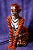 tiger by LauraLeone