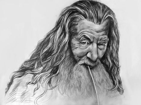 Gandalf by Walyco