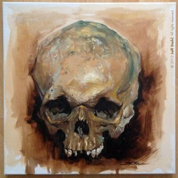Oil painting skull study by JeffStahl