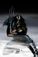Ultimate Wolverine Coloured by NineteenPSG
