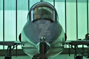 jet fighter by Earlmid