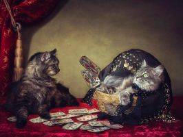 Fortune Teller. by Daykiney