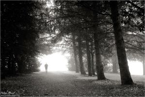 Ghost by Philippe-Albanel