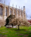 Eton College by Alice-Coal