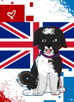 England flag by Lizzle1
