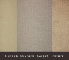 Carpet Texture by nureen-REStock