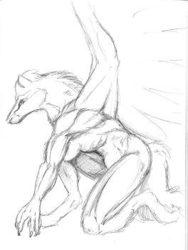 Musculature by Mana-the-eaglewolf