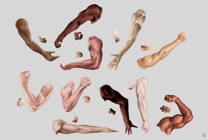 Male arm, hand and skin color STUDY by MonikaZagrobelna