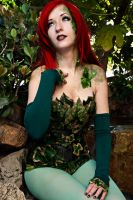 Its Ivy Poison Ivy by broken-with-roses