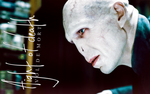 Voldemort / Flight of Death by peppermintfrogs
