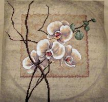 Orchids by StitchingSin