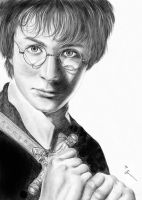 Harry Potter by joan-nez
