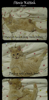 STEVE KITTEH: LIKE A BAUS by Blavi