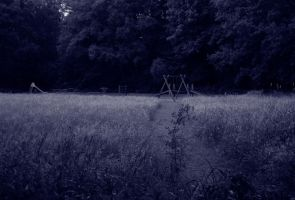 Abandoned Playground III by eschlehahn