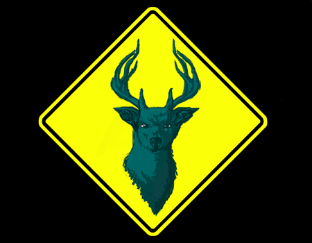 Teal Deer Banner Submission by TheInsanityOfTheSane