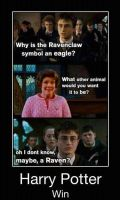 Harry Potter Win by briannas13