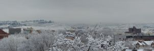 Boise in the Winter Panorama by ShawnHenry