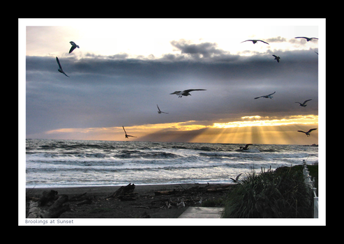 Brookings at Sunset I by YellowEleven