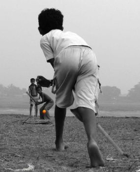 Cricket in my vein by Subh99