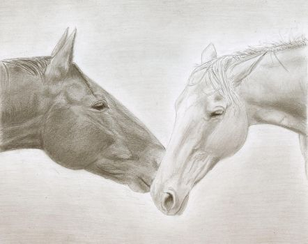 Pencil drawing by ChristianCowgirl116