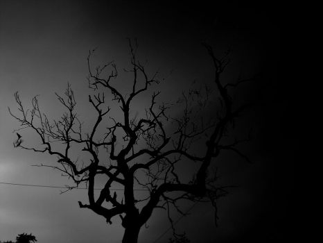 Tree Of Death by dogtag666