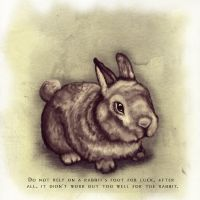 Do not rely on a rabbits foot by Gypsy-Love