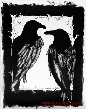 Two Ravens by hawkemai