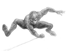 The Amazing Spider-Man by ToreTheCimmerian
