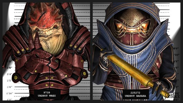 Mugshot - Wrex and Bakara by ShaunsArtHouse