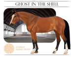 AEC School Horse - Ghost in the Shell by Ackerley