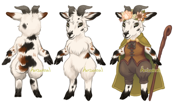 Woodland Witch Pygmy Goat by Herboreal